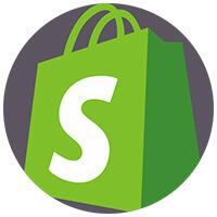 shopify-website (1)